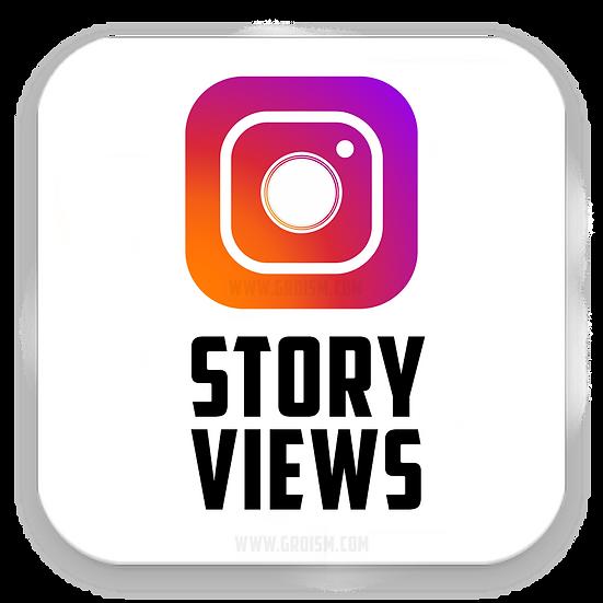 Instagram Story Views