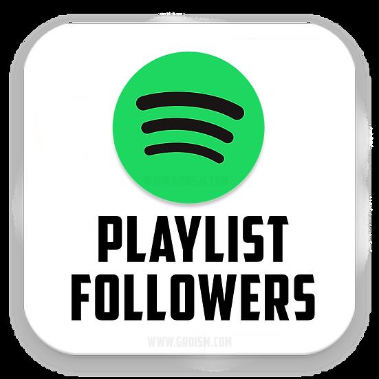 Spotify Playlist Followers