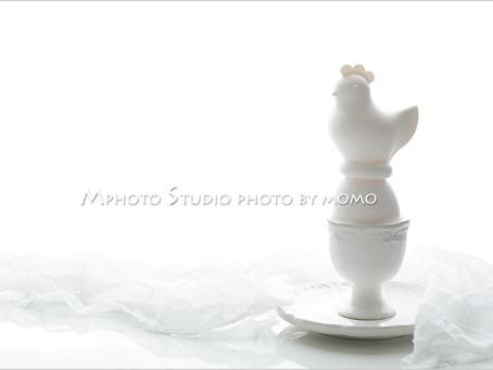 レッスンレポート Mphoto Lesson Sessionクラス2月レポ【White・白い世界を撮影】