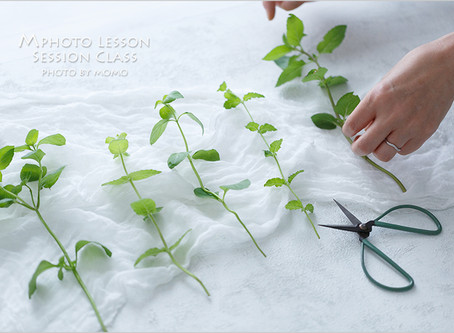 Mphoto Lesson Sessionクラス6月レポ(Green)