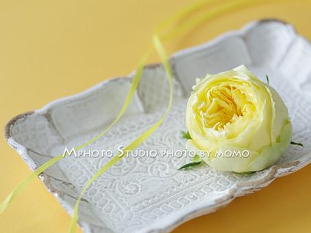 Mphoto Lesson Sessionクラス4月「Yellow」レッスンレポ