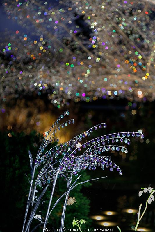 201911_箱根ガラスの森美術館