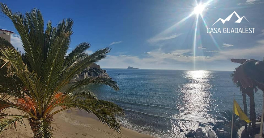 beach1_orig.jpg
