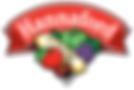 Hannaford Logo.png