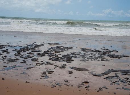 Das verdades inconvenientes: o mar de óleo no Nordeste Brasileiro