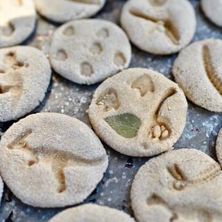 Dinosaur dough