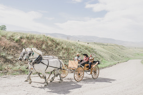 Chico Hot Springs Wedding with Horse Drawn Carriage
