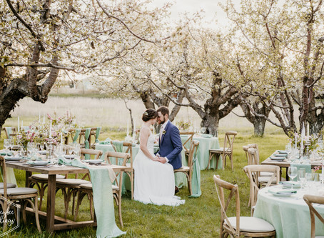 Montana Wedding Planner | Cherry Blossom Wedding Inspiration