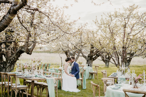 Cherry Blossom Wedding Inspiration from a Montana Wedding Planner