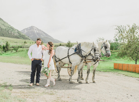 Chico Hot Springs Wedding with Horse Drawn Carriage | Intimate Wedding Photographer