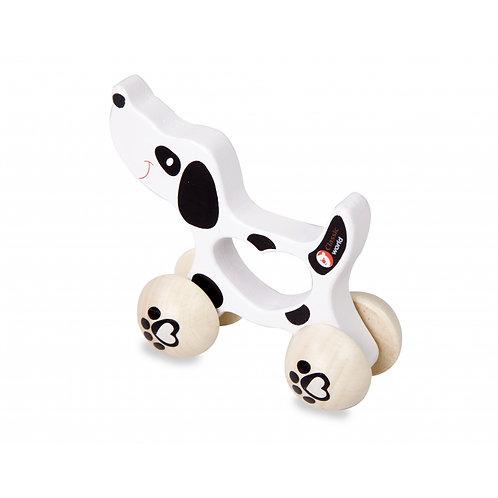 Medinis stumdomas šuo Dalmatinas