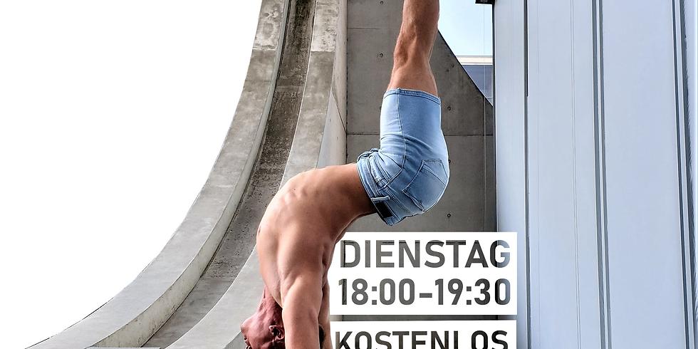 Handstand Helden - Online Kurs