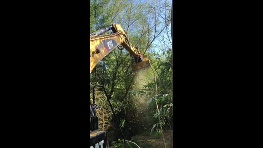 Caterpillar 320 mit Forstmulcher