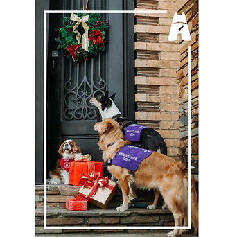 Christmas Card pack 12