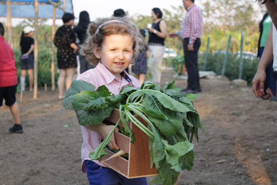 Veggie Farm at Pun Hlaing Estate