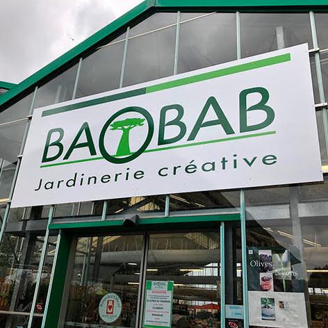 Baobab balaruc