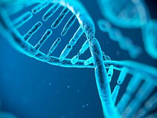 Les Mélanésiens possèderaient de l'ADN d'une espèce non identifiée.