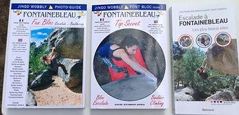 photo topo guide de fontainebleau