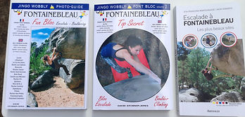 photo topo guide de fontainebleau