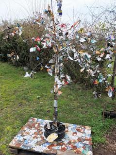L'arbre recyclé