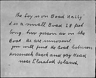 The Boad Nelly, Lindbergh Trial Transcripts, Hauptman Trial, Charles Lindbergh, Lindbergh Baby, Bruno Hauptmann, Bruno Richard Hauptmann, Anna Hauptmann, Manfred Hauptmann, Anne Lindbergh, Anne Morrow Lindbergh, Charles A. Lindbergh, Jr.