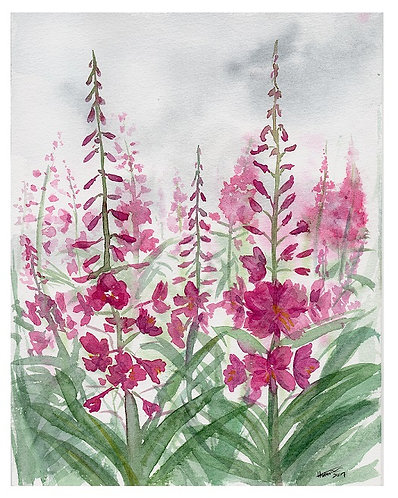 Fireweed Fog - Print