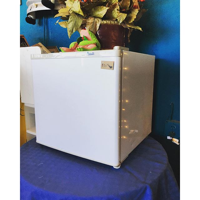 Avanti Mini Fridge