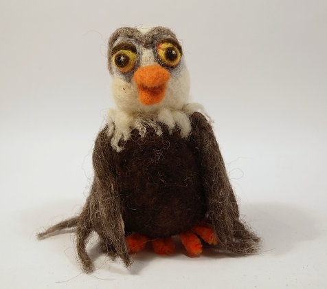 Aquila the bold eagle chick