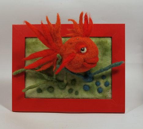 Framed Coral fish
