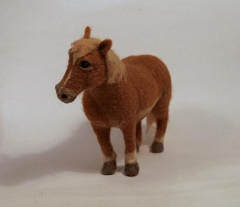 Flick Shetland pony