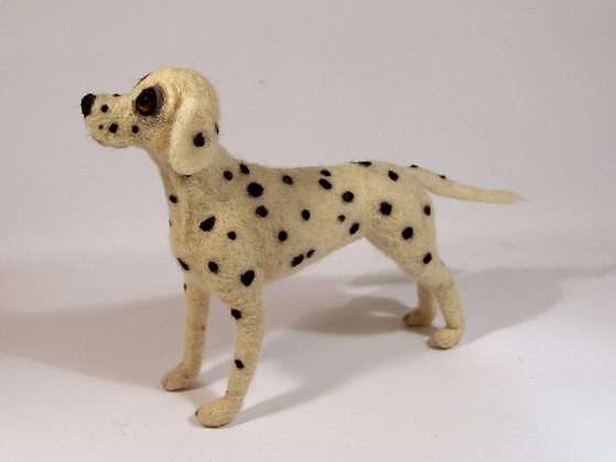 Dalmatian