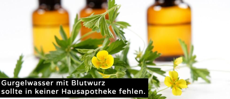 Hanfsamen_website.jpg