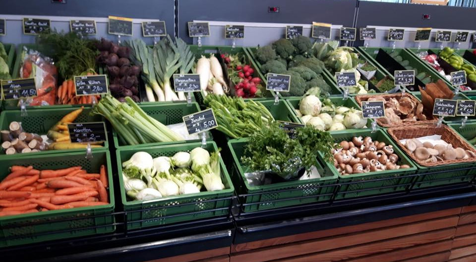 Obst und Gemüse frisch geerntet