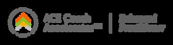 ACE-2021-Enhanced-Practitioner-Gray-Logo