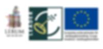 EU LOgga leader.png