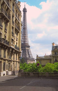 Avenue_de_Camoens_-_Tour_Eiffel_-_panoramio.jpg