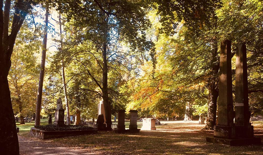 Der Albani-Friedhof im goldenen Herbst.