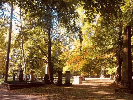 Goldener Herbst zum Tag der Restaurierung