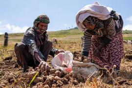 Amhara Region - Ethiopia