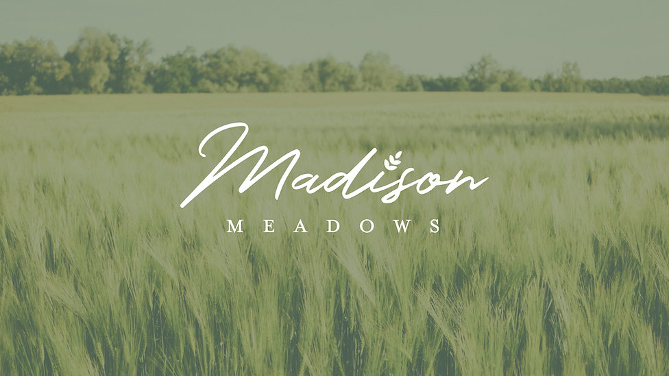 MadisonMeadows_Branding.jpg