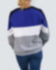 Sweatshirt3.png
