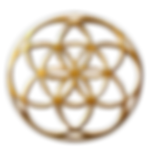 SYMBOL Rollup Seed of LIfe2.png