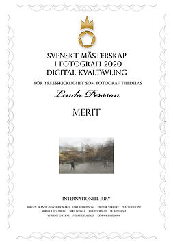 diplom-digital-1135.jpg