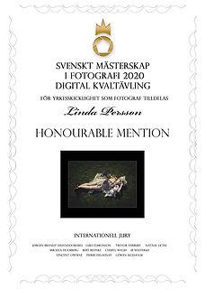 diplom-digital-1198.jpg