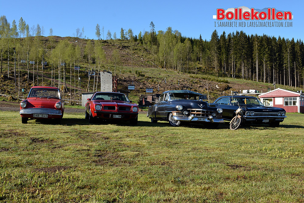 Som of the vehicles owned by us who are arranging the enthusiast vehicle show