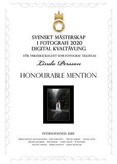 diplom-digital-1201.jpg