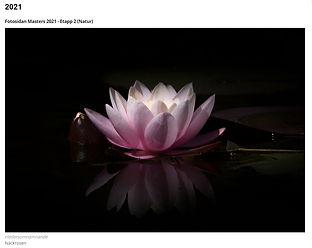 Fotosidan masters natur etapp 2 2021-03-