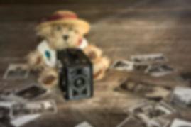 mini teddy still.jpg
