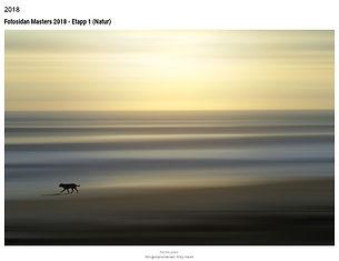fotosidan masters 2018.jpg