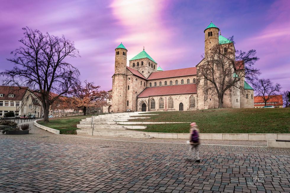 St. Michaelis purple